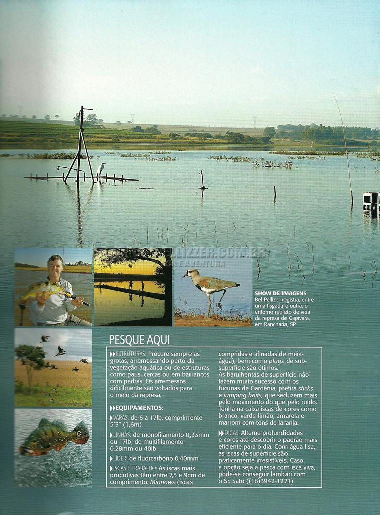 represas-sudeste-Capivara0013redz