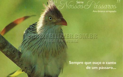"""Lançamento Cartões Postais """"Nossos Pássaros"""" / junho 2009"""