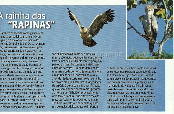 7-dias-no-Xingu0025_02julrecredz