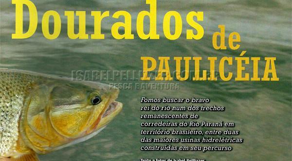 Dourados de Paulicéia
