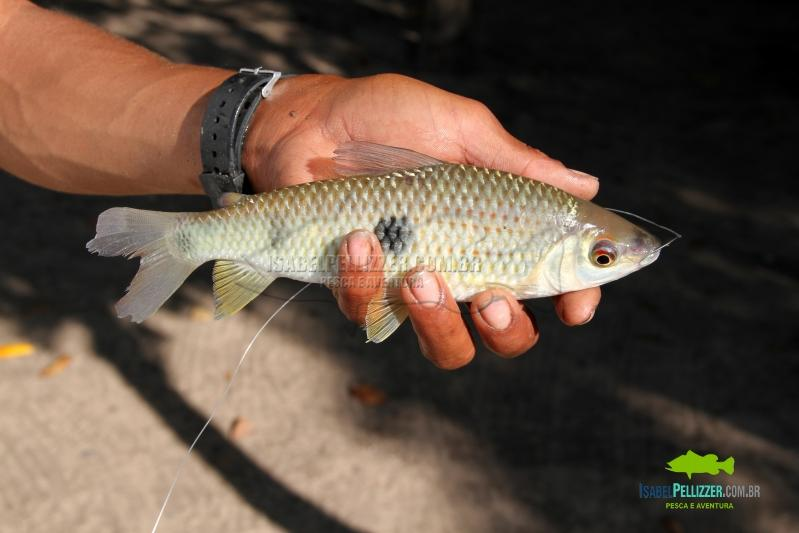 IMG_0292 pesca barrancoT