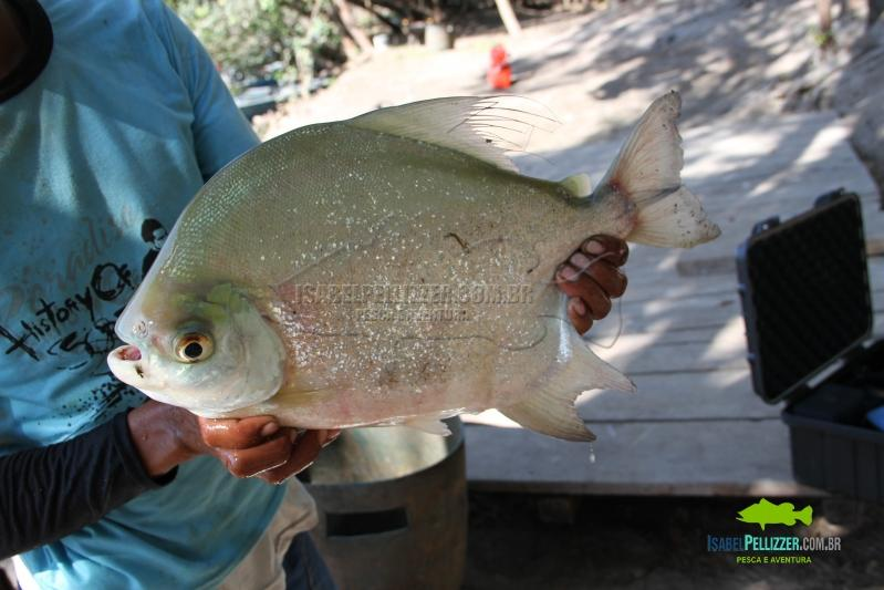 IMG_8872 pesca barranco