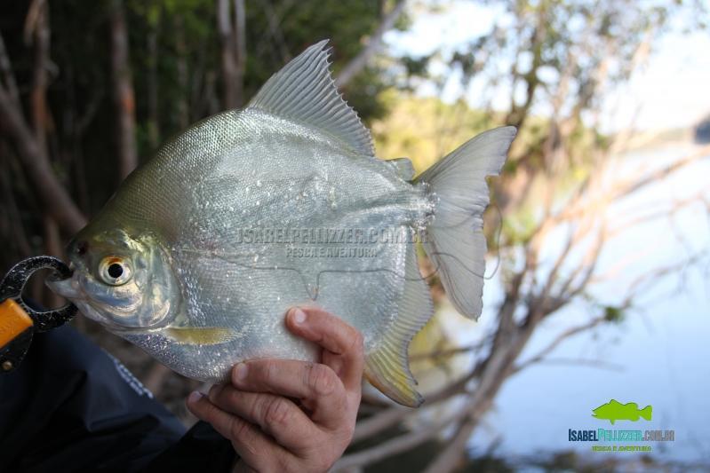 IMG_9795 pesca barranco