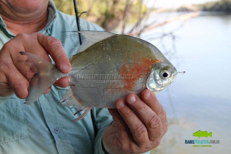IMG_9855 pesca barranco