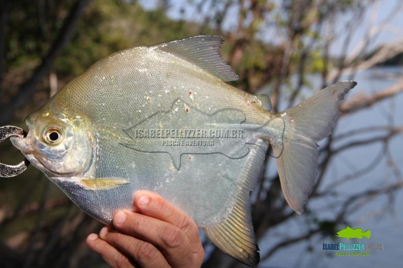 IMG_9863 pesca barranco