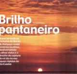 Brilho Pantaneiro