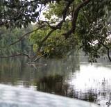 IMG_3590_lago chidaua