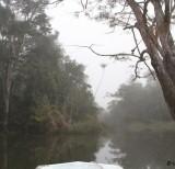 IMG_4786-transposição paranãs e neblina
