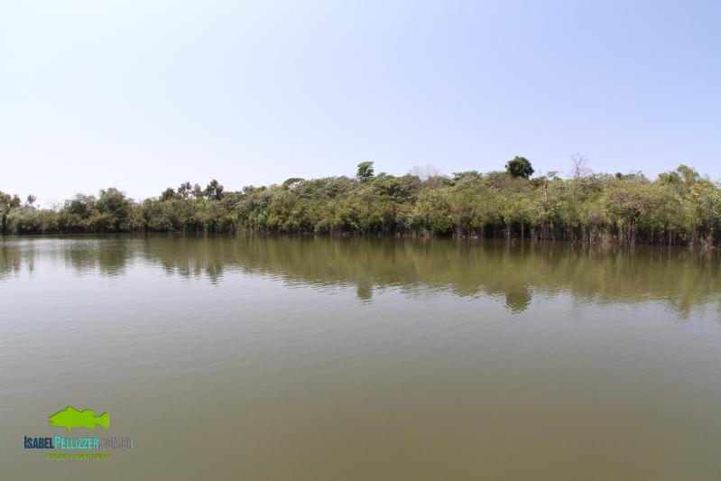 IMG_0831 lago 60