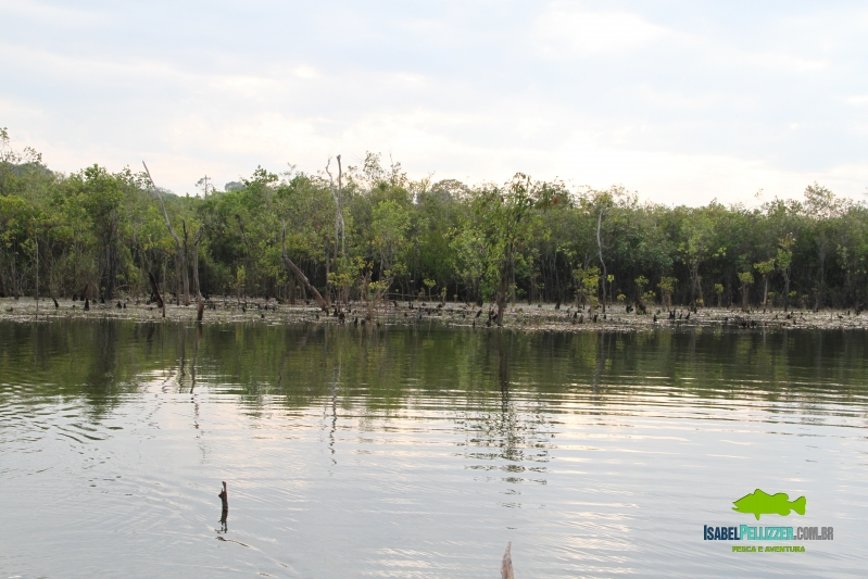 IMG_1281 estrutura lago 60
