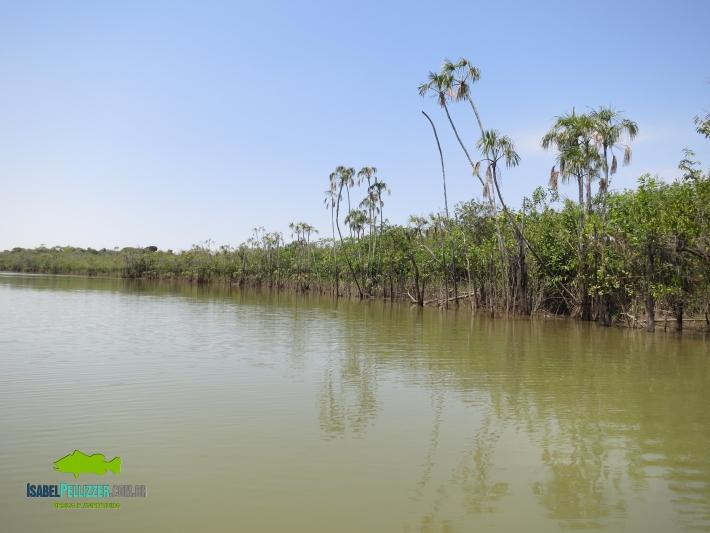 IMG_1482 lago 60