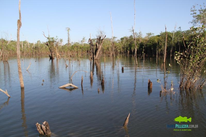 IMG_8884 estrutura pesca tres lagos