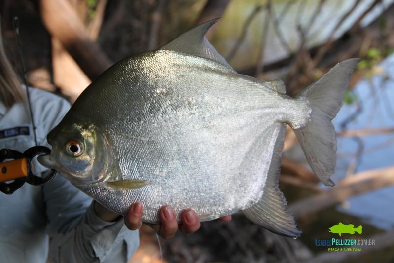IMG_9821 pesca barranco