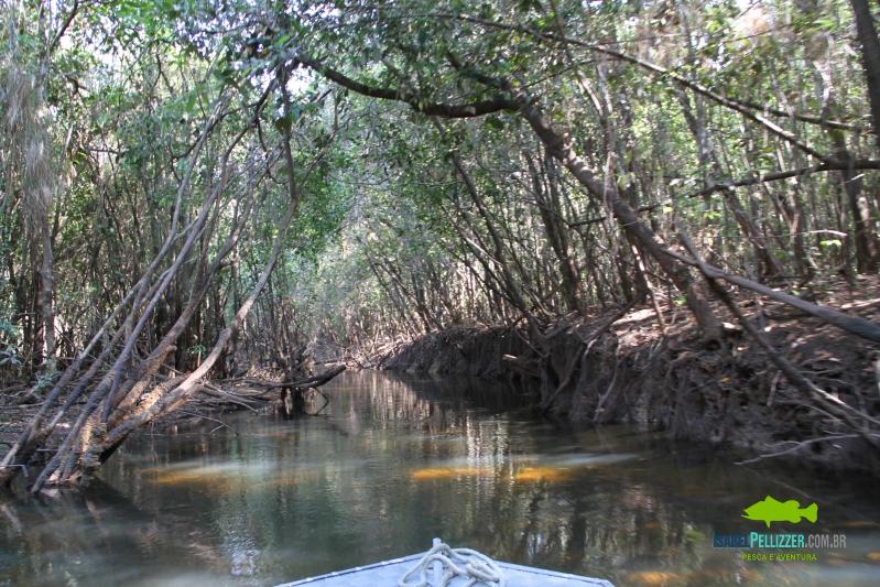 IMG_9890 travessia tres lagos
