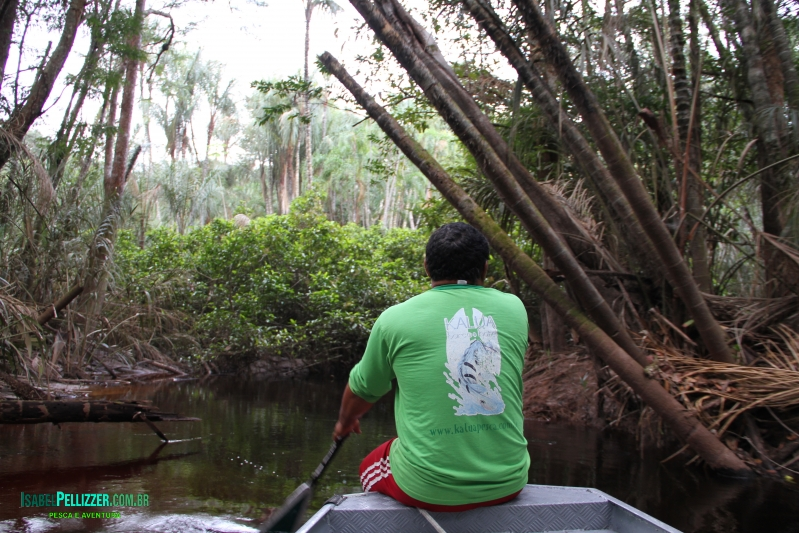 canais acesso lago 1181