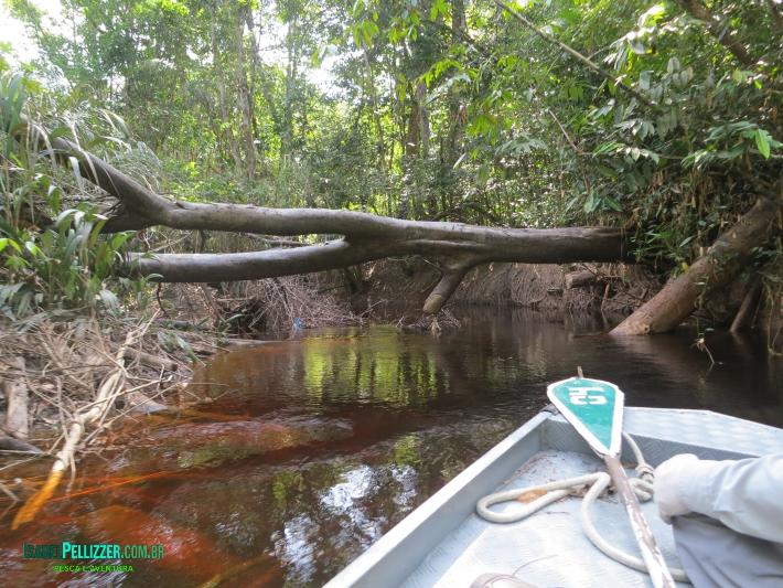 canais acesso lago IMG_3271