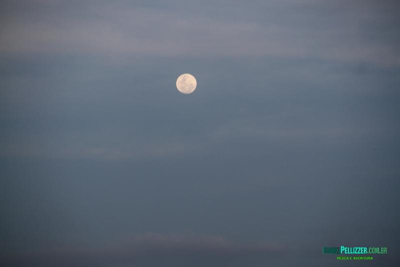lua 1156