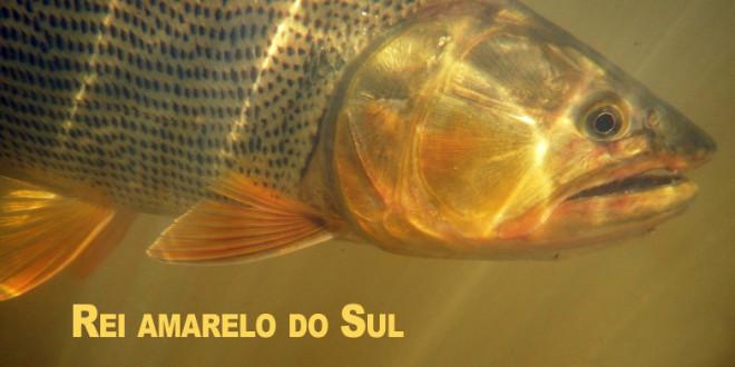 Pesca no Rio Uruguai em Porto Xavier/RS