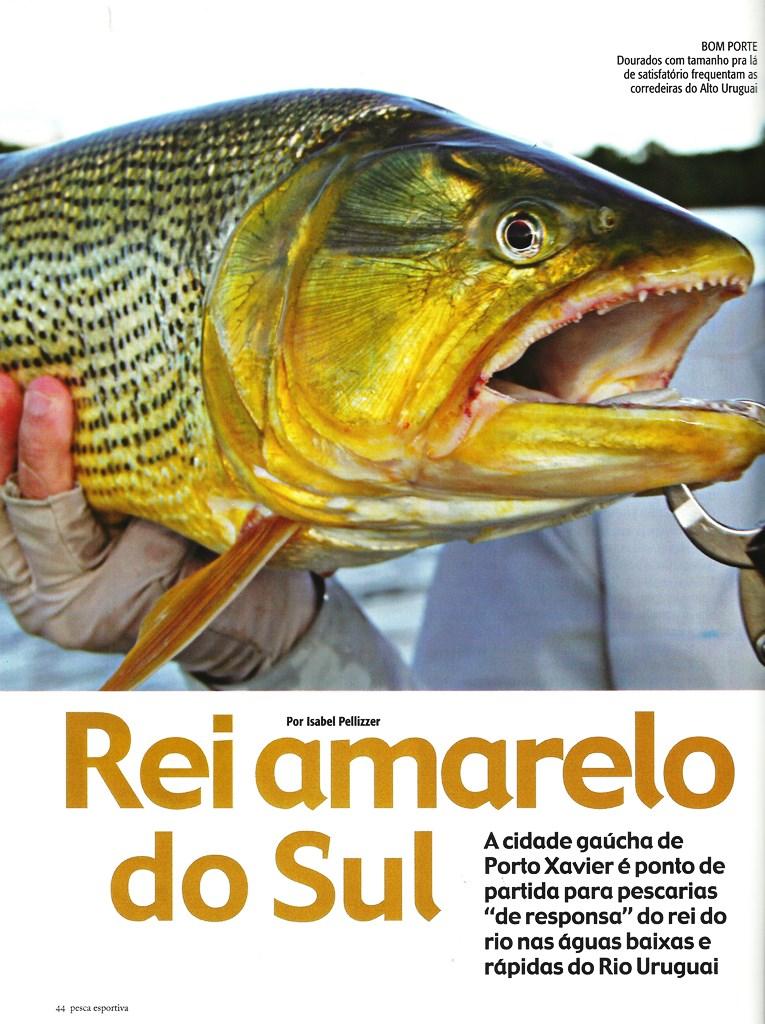 Rei Amarelo do Sul 1redz