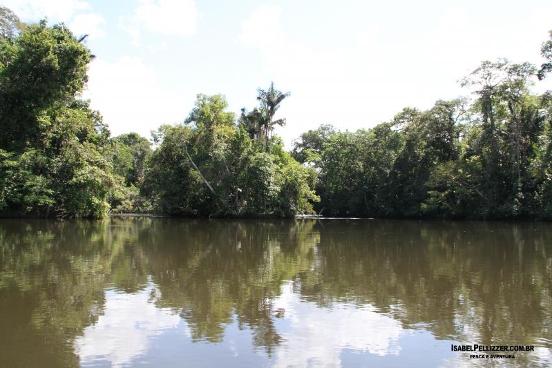 IMG_2677 aguas calmas e ilha