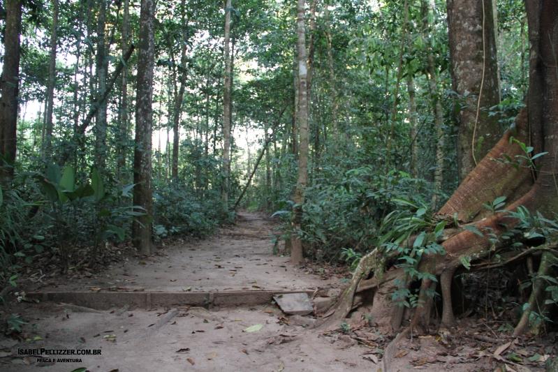 IMG_2983 trilha ao rio