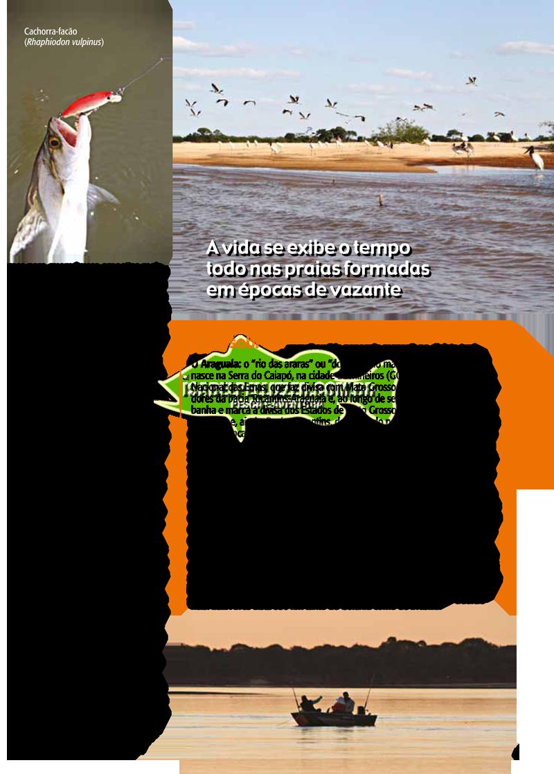 araguaia 211-4