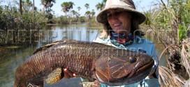 Pescaria no Suiá-Miçu